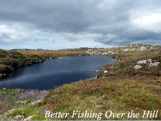 Better_Fishing_Over_the_Hill